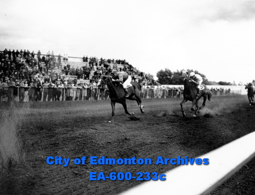 Horse Track Edmonton