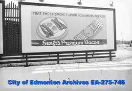Sign - Swift's Bacon