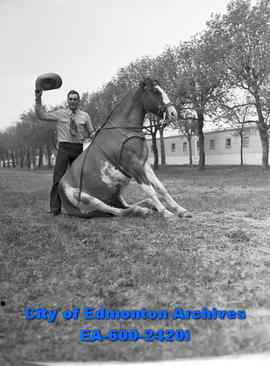 Spring Horse Show: Harold Girlitz and horse Trigger perform tricks.