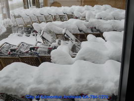 Shopping Carts Under Snow