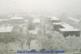 Spring Snow Storm - Image 5 of 6