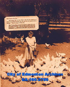 A woman feeding chickens and Psalm 32.