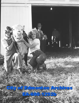 Two children posing with a calf at the Camrose Annual Fair.