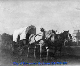 Covered wagon drawn by horses in a parade
