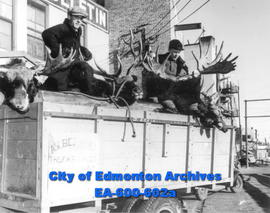 Art Beasley and P. A. Robb pose with the products of a successful moose and deer hunt in the Robb...