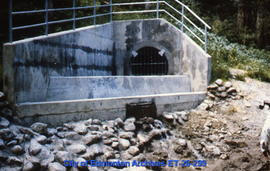 Sewer outfall