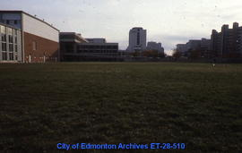 Physical Education, University of Alberta