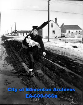 Postman Wes Ferry carrying mail near 116 avenue and 91 street during the spring thaw.