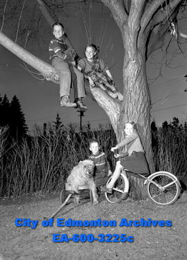 Women's Page: sitting on a tree branch. Maury, Vicky, Peter, and Catherine Van Vliet.