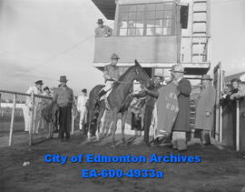 Horse Races - Decorating Storm Bell, yesterday's winner of Alberta Derby is Hon. J.J. Bowlen. Sta...