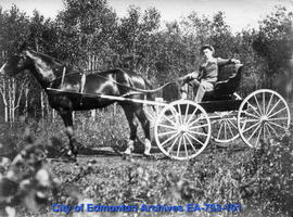 Man driving horse and buggy