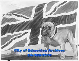 A drawing of a British Flag and a bulldog.