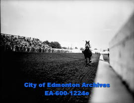 Borg-An-King wins the biggest prize of the day at Edmonton Exhibition track.