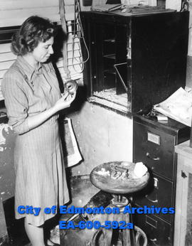 Employee Ann Van Dyke examines the job done by thieves at the Jasper Place Dairy (119 street and ...