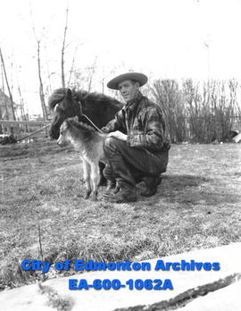 Smallest colt ever born in Alberta with its mother and owner Bill Hay.