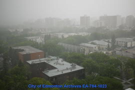 Summer Storm - Image 7 of 8