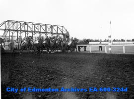 Horse racing at the Edmonton Exhibition grounds track.