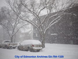 Winter Snowfall - Image 9 of 13